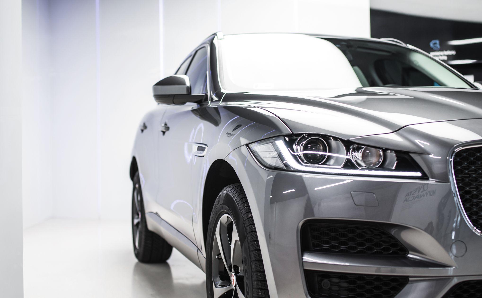 jaguar-8